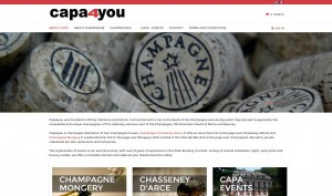 online webshop capa4you sinergio webdesign