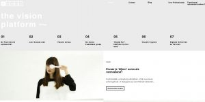 the vision platform website