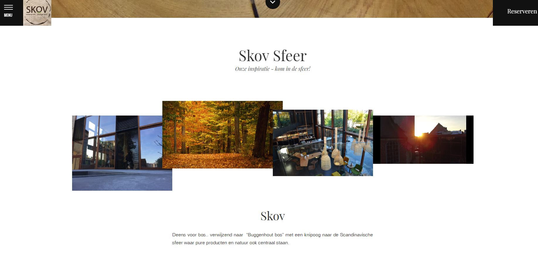 Skov Buggenhout 2