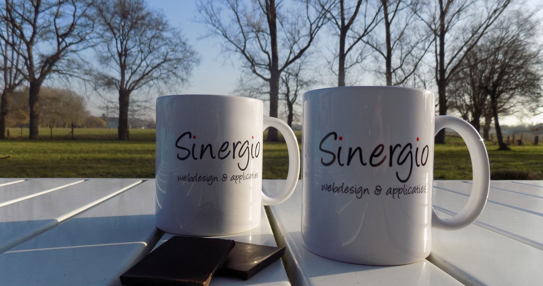 Sinergio mok webdesign en applicaties